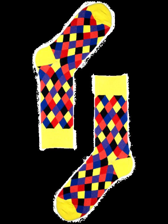 MS081_2